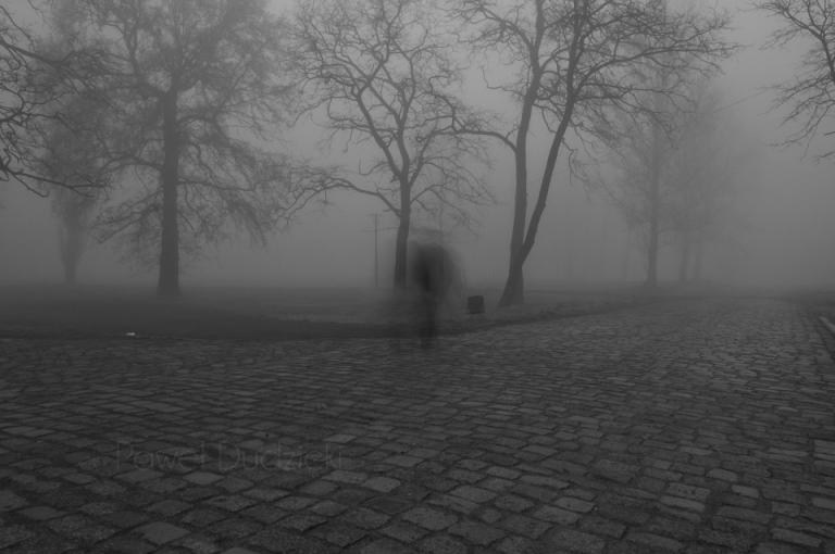Wiosenna mgła