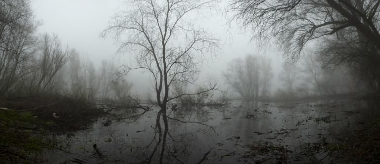 Wiosenna mgła (panorama)